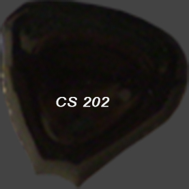 CS202