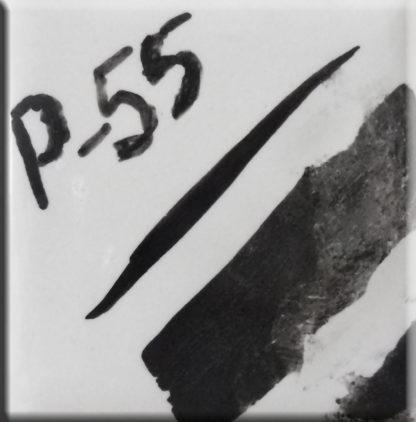 Colorante P-55